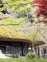 บริการถ่ายพรีเวดดิ้งในประเทศญี่ปุ่น