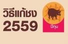 วิธีแก้ปีชง 2559 แก้ชงคนเกิดปีกุน