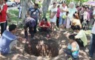 ข่าวหวย ตื่นขุดหาร่างเมียพระยาพิชัยดาบหักอายุกว่า 200 ปีฝังอยู่ใต้ต้นโพธิ์
