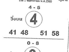 เลขเด็ด ม้าสีหมอก งวด 1 พฤศจิกายน 2560