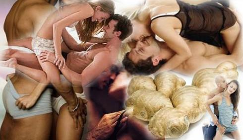 6อาหารบำรุงเซ็กส์